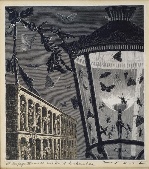 71_Memento Mori-et les papillons se mettent à chanter_1929_max_ernst_schmetterlinge